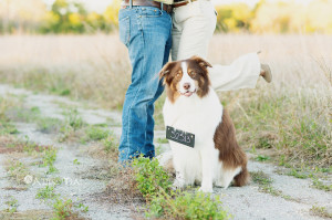 dallas_wedding_photographer_wales_manor_winery_mckinney_texas-024